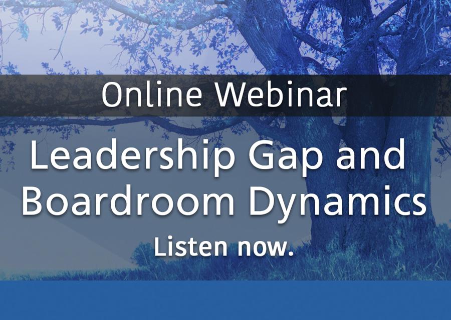 Leadership Gap and Board Room Dynamics